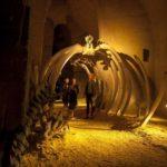 Site des Perrieres : les mystères de falun